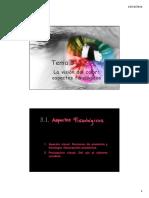 TEMA 3 VisionColor AspectosFisiologicos 2012