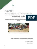 Akoyoko Astrid - Internship Final Report
