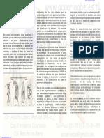 15453054-Alimento-Vivo-para-Peces-de-Ornato.pdf