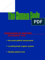 # the Human Anatomy