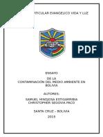 Colegio Particular EVANGELICO Vida y Luz ensayo tipo tesina