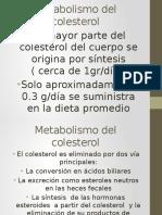 Metabolismo Del Colesterol (1)