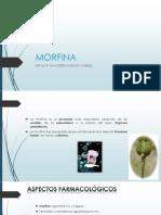 Morfina Expo