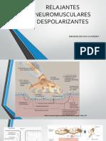 Relajantes Neuromusculares Despolarizantes Expo