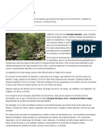 Bosque caducifolio Icarito