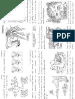 Patito-Feo.pdf