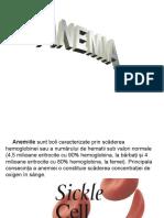 HEMATOLOGIE - ANEMIILE