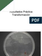 Laboratorio Calculo Eficiencia Transformacion_analisis resultados transformacion.pdf