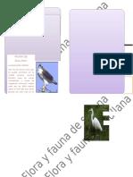 flora y fauna de sullana