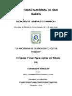 Informe Sobre Audit. Gest.