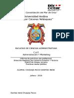 ESCRUTURA DE PLAN DE PRACTICAS PRE PROFECIONALES.docx