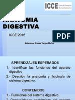 Clase 1 Anatomia Digestiva