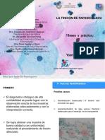 Manual JICA de Tinción Ing. Taira