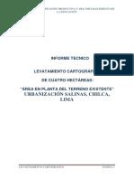 INFORME-CARTOGRÁFICO-chilca (1).pdf