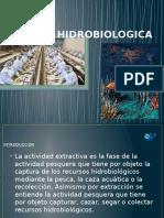 Industria Hidrobiologica