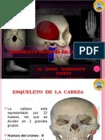 1 Osteologia General de La Cabeza (1)