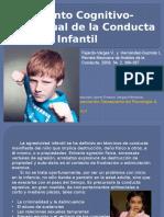 conducta_agresiva_infantil.pptx