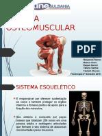 Sistema Osteomuscular Biofísica