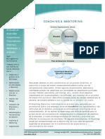 Flyer Coaching & Mentoring Definitivo v.1.5