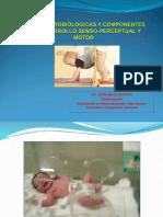 Bases Neurobiólogicas y Componentes Del Desarrollo Senso-perceptual y Motor