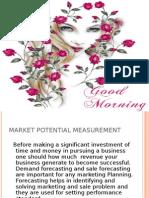 Market Potential Measurement(1)