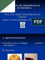 FUNGOS DE IMPORTANCIA ECONOMICA.ppt