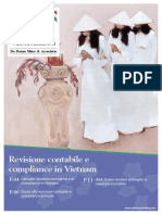 Revisione Contabile e Compliance in Vietnam
