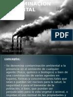 Contaminacion Ambiental g3-A