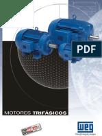 Motores Trifasicos W21 - Especificaciones