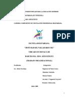 Trabajo Organizacional Educacion Primaria SEB
