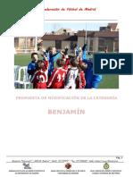 Informe Modificación Categoria Benjamin