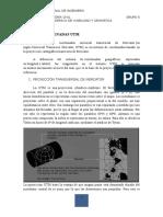 Trabajo Escalonado-PARTE II.docx