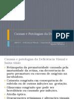 Causas/patologias da Deficiência visual