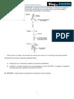 Botãnica Histologia Vegetal Meristemas