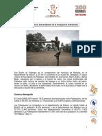 Caracterización comunidad palequera