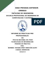 Formato de Informe de PPP