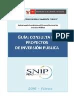 Guia Usuario Consulta PIP
