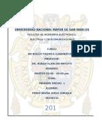 InformePrevio1 MICRO 2016completo