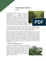 Ecología Tarea Zonas Protegidas