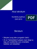 Akut_skrotum - Endre