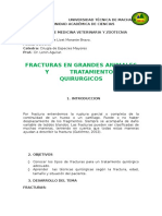 TRAB.FRACTURAS