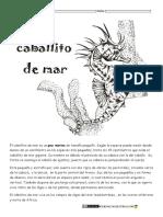 curiosidades-de-animales-caballito-de-mar1.pdf