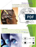 Procesos Cognitivos (1)