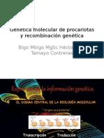 Genética Molecular de Procariotas y Recombinación Genética