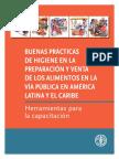 Manual BP Higiene Manufactura