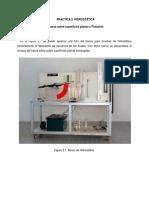 Practica 2 Hidrostatica fuerzas y flotacion.pdf