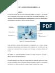 Practica_4_Principio de Bernoulli.pdf