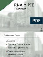 PIERNA Y PIE.pdf