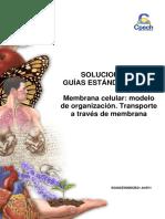2016 Solucionario Guía 6 Membrana Celular - Modelo de Organización Transporte a Través de Membrana