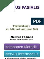 Nervus Fasialis
